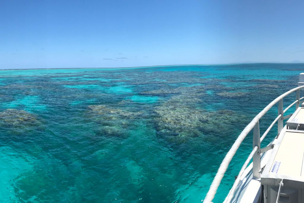 Great Barrier with Wavelength Reef Cruises