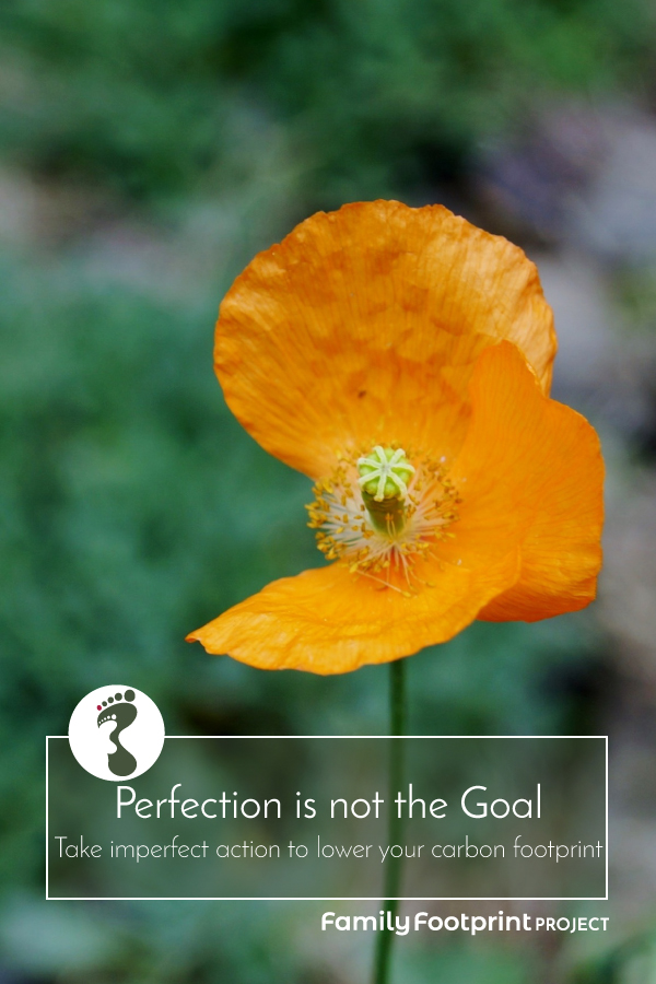 Perfection is not the goal pinterest image