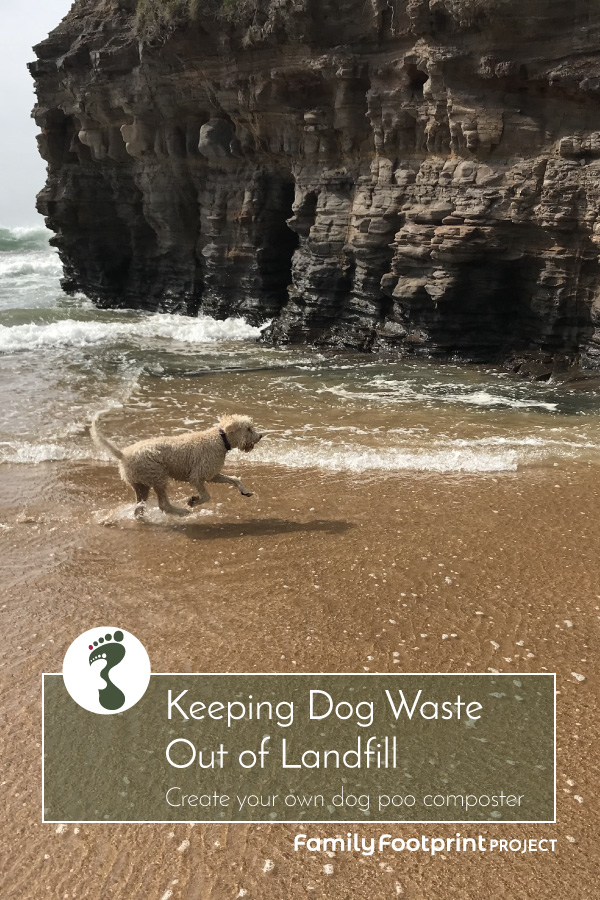Keeping Dog Waste out of Landfill Pinterest Image